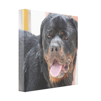 Customize Product Gallery Wrapped Canvas
