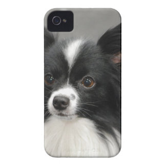 Customize Product Case-Mate iPhone 4 Case