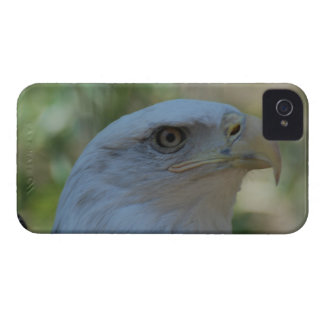 Customize Product Case-Mate iPhone 4 Cases
