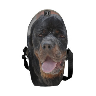 Customize Product Commuter Bags