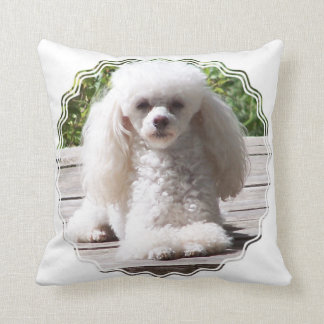 Customize Product Cushion