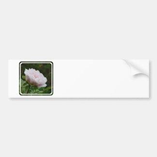 Customize Product - Customized Bumper Sticker