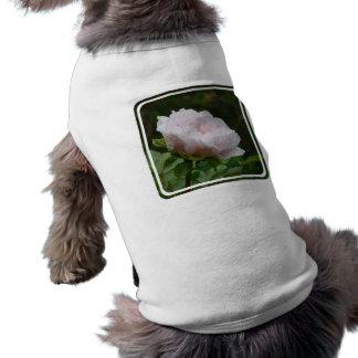 Customize Product - Customized Sleeveless Dog Shirt