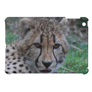Customize Product iPad Mini Cases