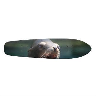 Customize Product 19.7 Cm Skateboard Deck