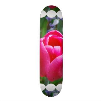 Customize Product Skateboard Decks