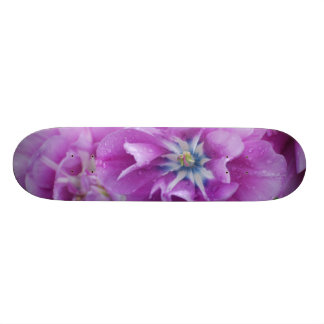 Customize Product Skate Boards