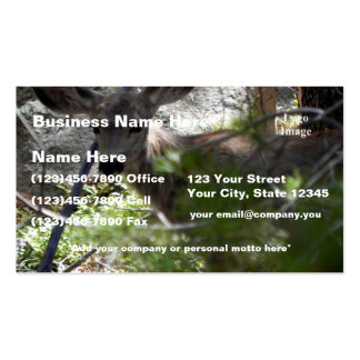 (Customize) Yearling Mule Deer - Estes Park Pack Of Standard Business Cards