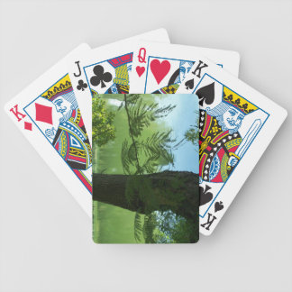 Customized Playing Cards-Tree on the lake SC Playing Cards