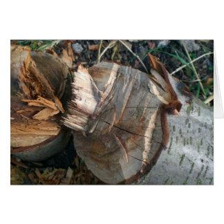 Cut Down Plum Tree Card
