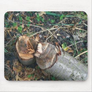 Cut Down Plum Tree Mouse Pad