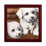 cute 4 fluffy puppies gift box