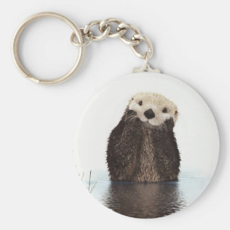 Cute adorable fluffy otter animal basic round button key ring