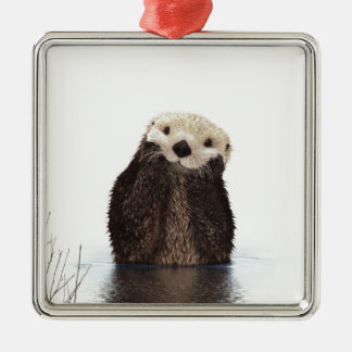 Cute adorable fluffy otter animal christmas ornament