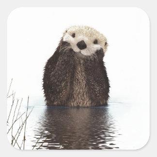 Cute adorable fluffy otter animal square sticker