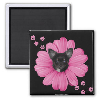 Cute Adorable Sly Heaven Chihuahua Magnet