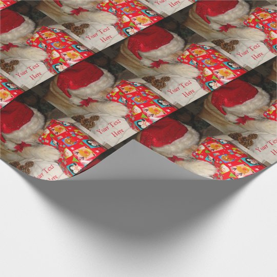 Cute akita dog santa hat opening christmas gift