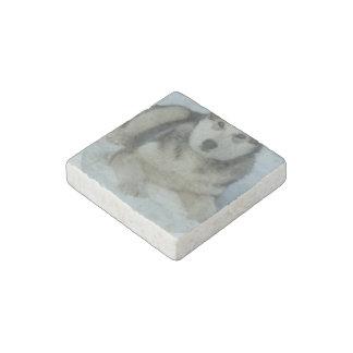 Cute Alaskan Malamute Stone Magnet
