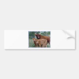 Cute and adorable fluffy fatty Highland calves Bumper Sticker