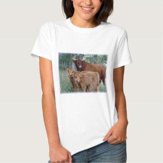 Cute and adorable fluffy fatty Highland calves Tee Shirt