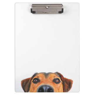 Cute and funny dog's face clipboard