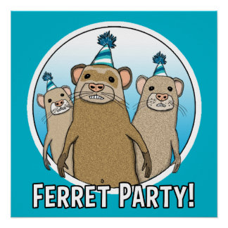 Cute and Funny Ferret Party