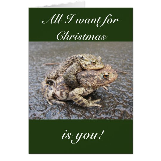 Cute and funny frog/toad Christmas greeting card! Card