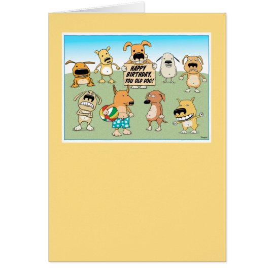 Cute and Funny Old Dog Birthday Card