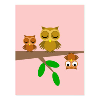 cute and funny owls postcard