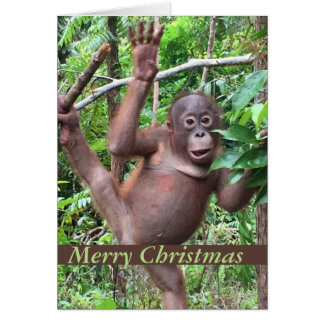 Cute Animal Merry Christmas Orangutan Baby Card