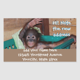 Cute Animal New Address Labels Stickers