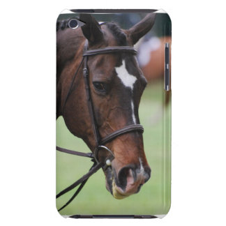 Cute Arabian Horse iTouch Case