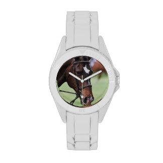 Cute Arabian Horse Watch