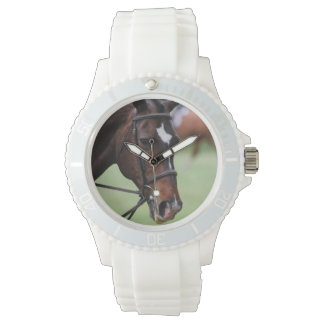 Cute Arabian Horse Watch