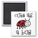 Cute as a Bug Fridge Magnet