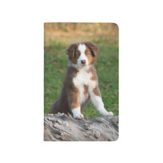 Cute Australian Shepherd Dog Puppy Photo - Pocket Journal