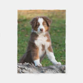 Cute Australian Shepherd Puppy, comfy Fleece Blanket