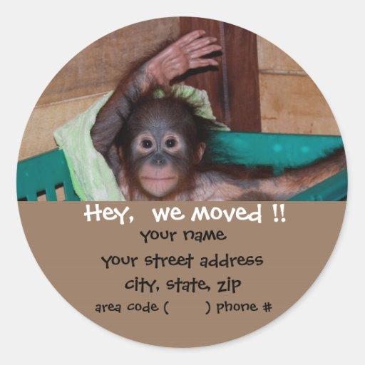 Cute Baby Animal Return Address Labels Sticker
