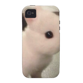 Cute baby bunny iPhone 4/4S cover