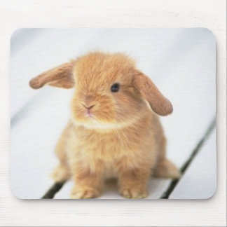 Cute Baby Bunny Happy Easter Design Mouse Mat