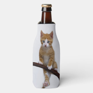 Cute Baby Cat Kitten Funny Gym Photo Bottle-Jacket
