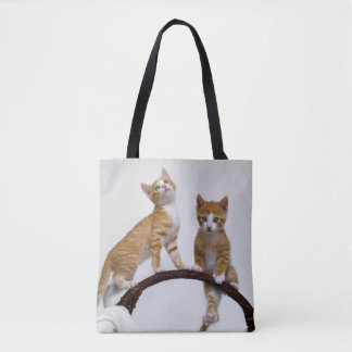 Cute Baby Cat Kitten Funny Gym Photo - Shopper Tote Bag