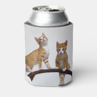 Cute Baby Cats Kittens Funny Gym Photo - Bawdle Can Cooler
