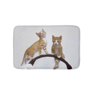 Cute Baby Cats Kittens Funny Gym Photo - Small Bath Mat
