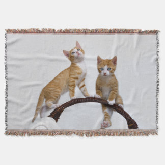 Cute Baby Cats Kittens Funny Gym Photo - soft Throw Blanket