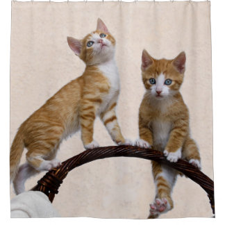 Cute Baby Cats Kittens Funny Play Gym Photo - Tub Shower Curtain