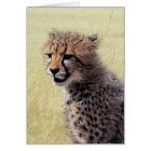 Cute baby Cheetah Cub Card