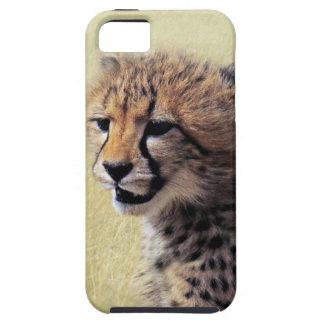 Cute baby Cheetah Cub iPhone 5 Cases