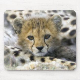 Cute Baby Cheetah Mouse Mat