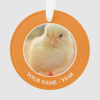 Cute baby chicks. ornament